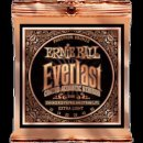 Ernie Ball EB 2550 Everlast Coated Phosphor Bronze