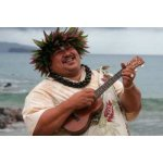 Die  Ukulele  (hawaiisch:  Ukulele )...